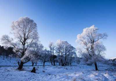 阿尔山冬季旅游玩什么,阿尔山冬季旅游景点介绍