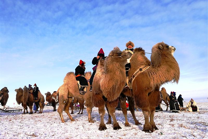 内蒙古冰雪旅游节暨呼伦贝尔冬季冰雪那达慕系列活动精彩瞬间