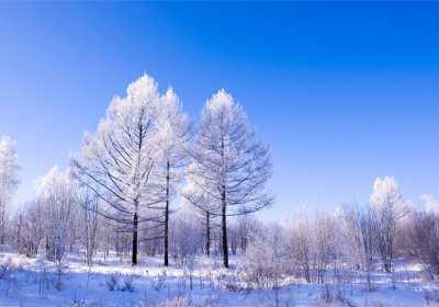 呼伦贝尔冬季旅游路线图,呼伦贝尔冬季自驾游手绘地图
