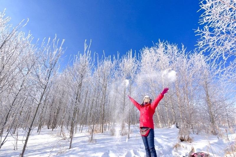 在呼伦贝尔,零下50℃的雾淞是什么样子?