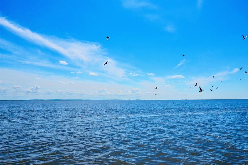旅游旺季如何出游?避免摩肩接踵的首选目的地—呼伦贝尔