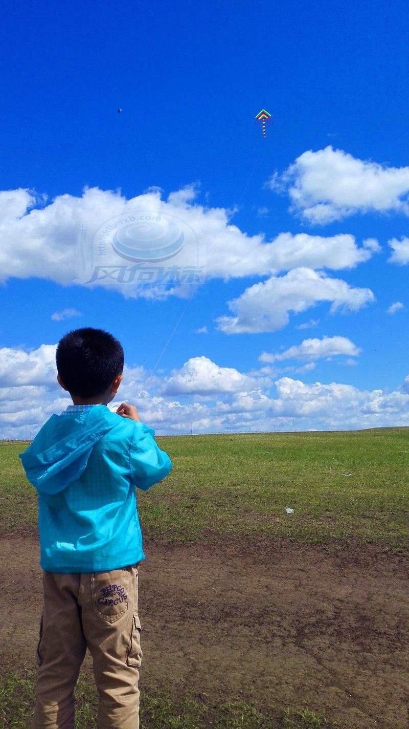 草原放风筝