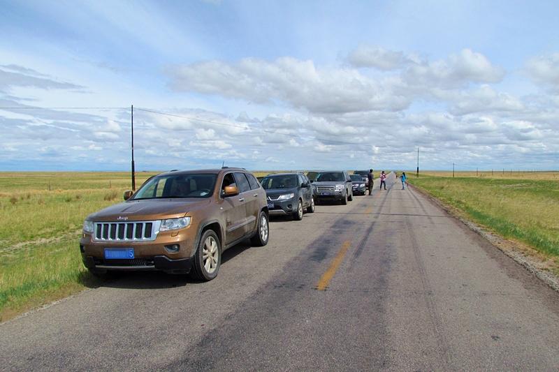 去呼伦贝尔大草原旅游最佳的旅游方式