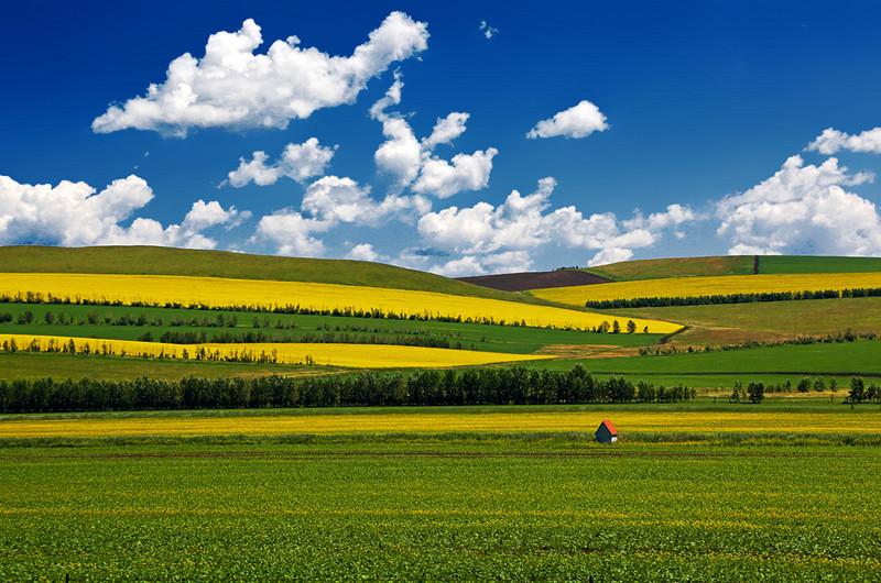 呼伦贝尔草原7日游,呼伦贝尔阿尔山南北经典大环线全年计划