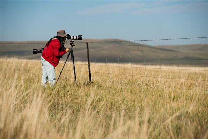 呼伦贝尔秋季摄影建议,呼伦贝尔秋季摄影攻略