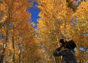 呼伦贝尔秋季北环线经典5日游旅游攻略及旅游线路
