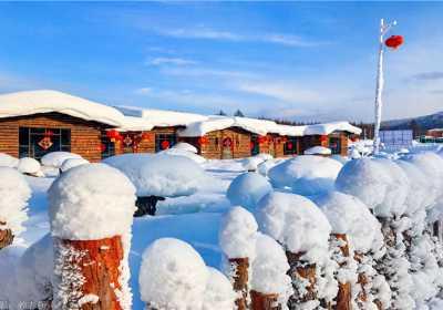 一路向北|冬季就到呼伦贝尔赏雪、玩雪