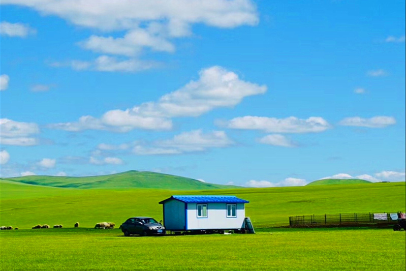呼伦贝尔大草原海拔多少?