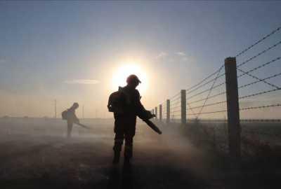 俄罗斯明火入境呼伦贝尔 目前已全线被扑灭