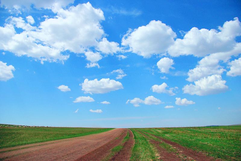 第一次来呼伦贝尔草原旅游,为什么不建议自驾游?