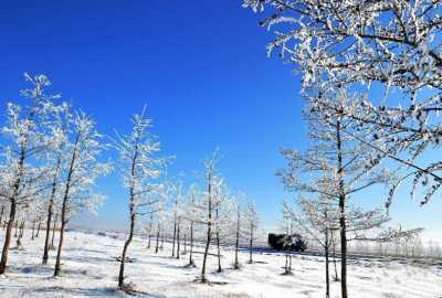 呼伦贝尔冬季旅游,推动旅游产业发展