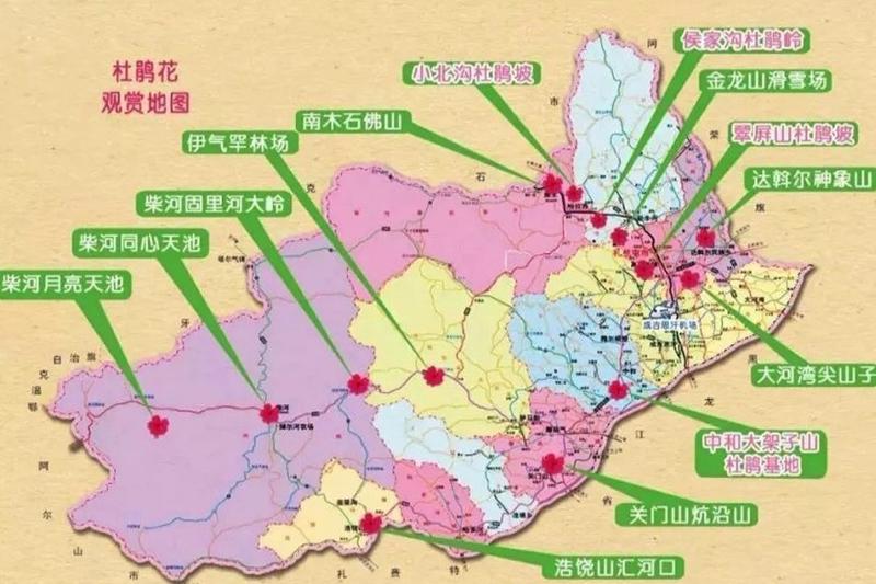 扎兰屯杜鹃花节赏花线路图