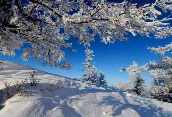 (冰雪旅游)阿尔山泡温泉 赏不冻河 雾凇奇观冰雪体验3日游