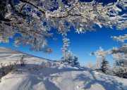 (冰雪旅游)阿尔山泡温泉 赏不冻河 雪村  雾凇奇观冰雪体验3日游